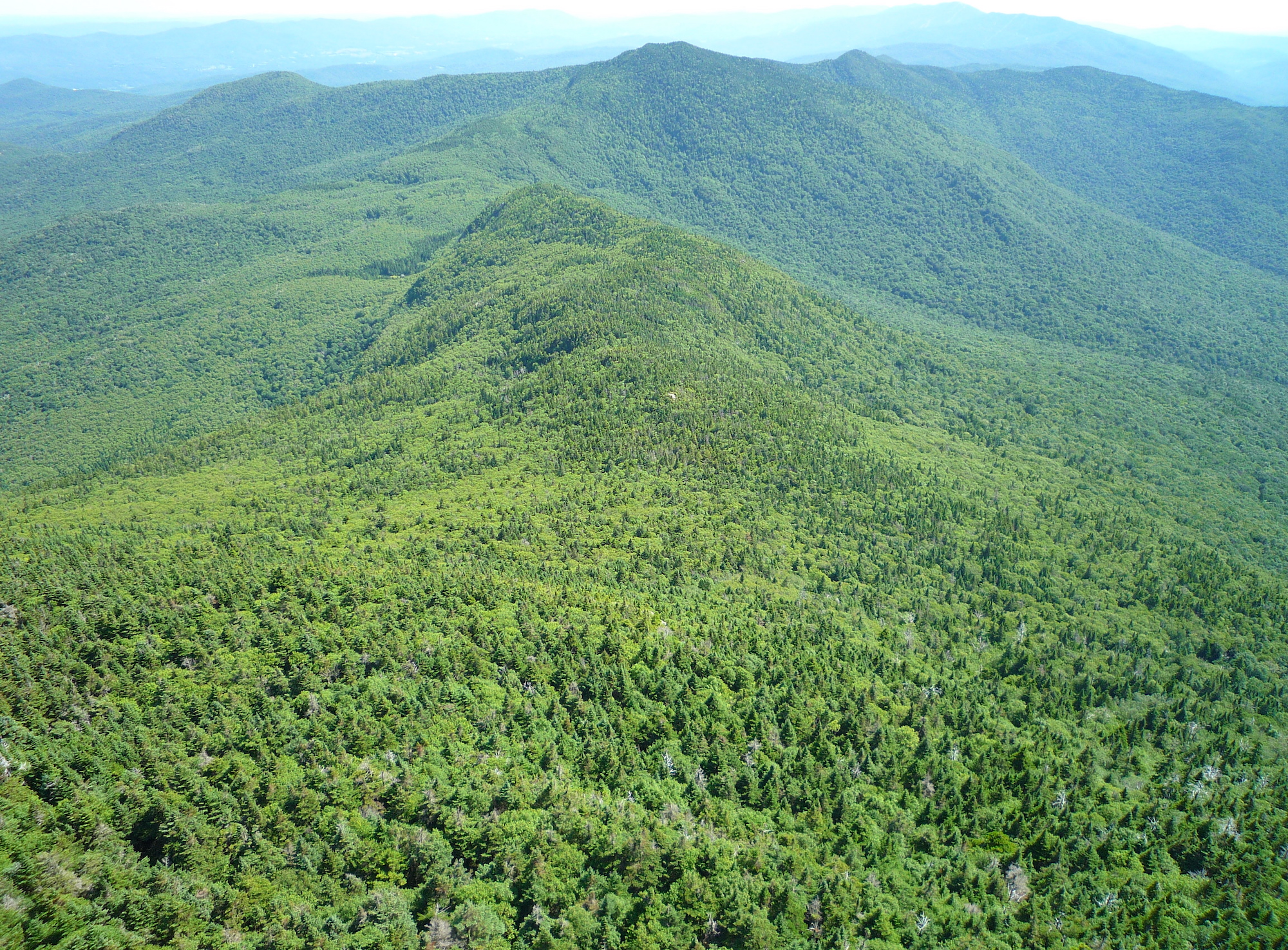 fig. a: green, Green Mountains
