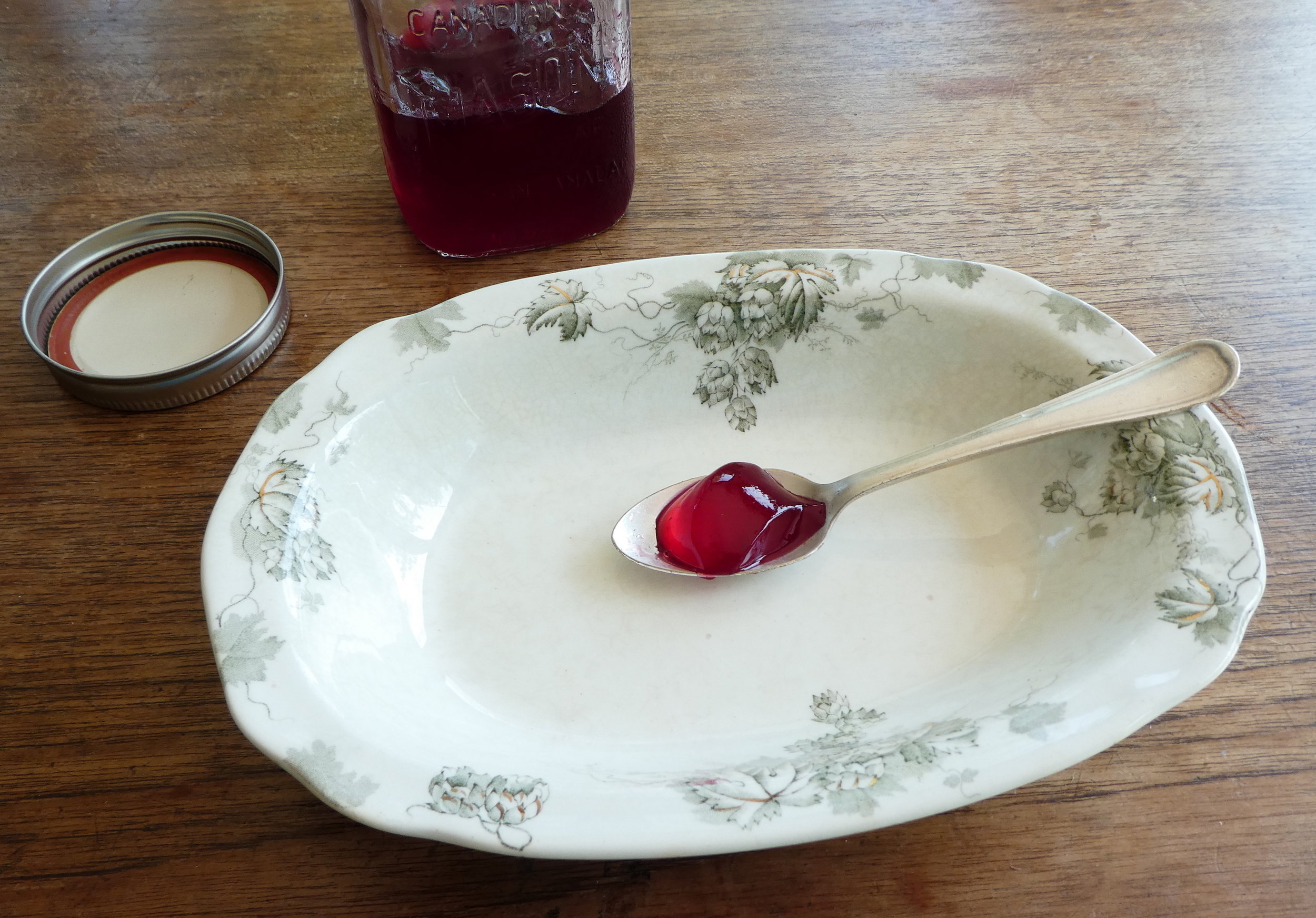 fig. b: still life with quivering jelly