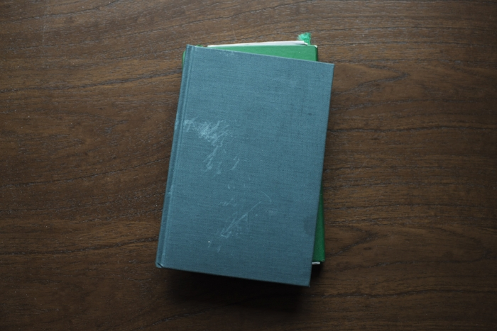 AllanLewis_Books
