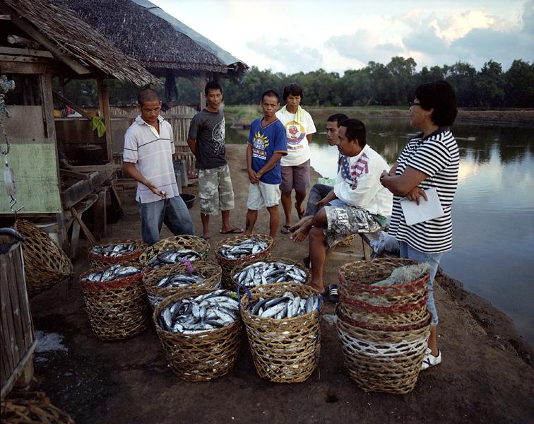 fish harvest 152-600.jpg
