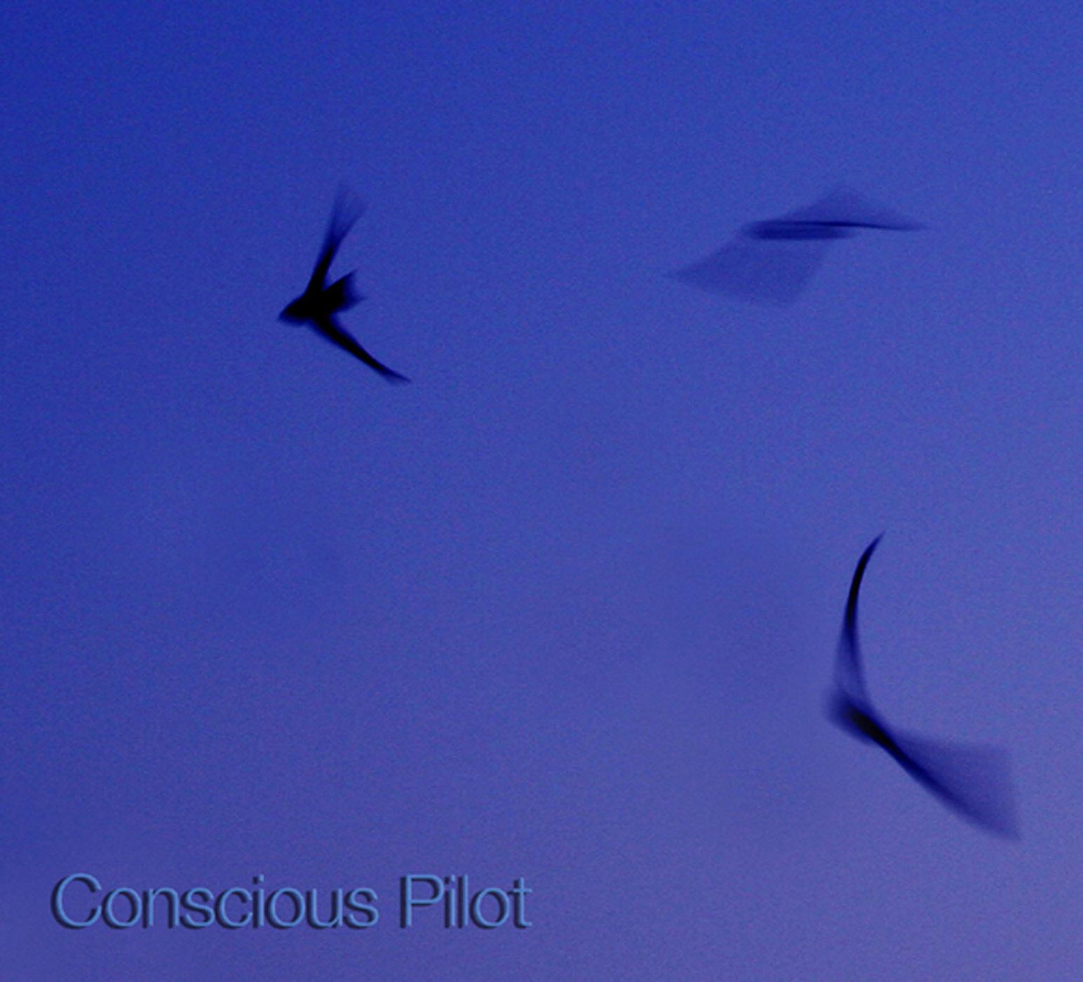 conscious pilot.jpg