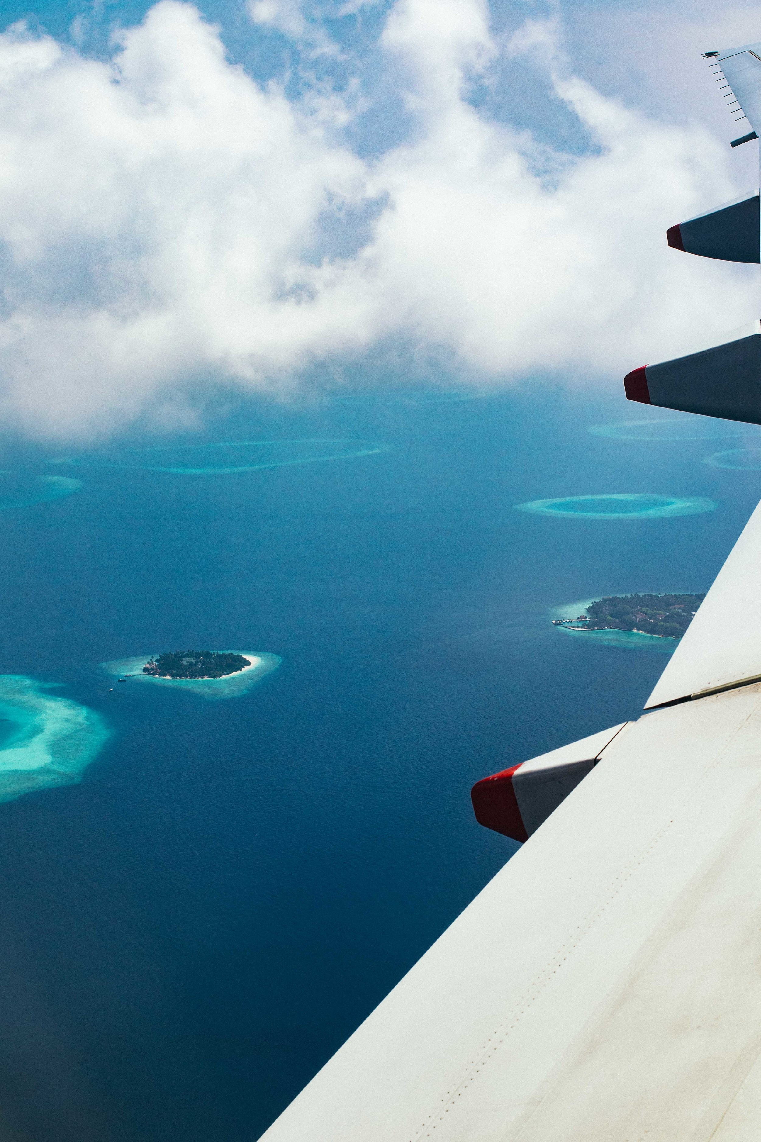 MALDIVES_CORONA_COCONUT COMRADERY_05.jpg