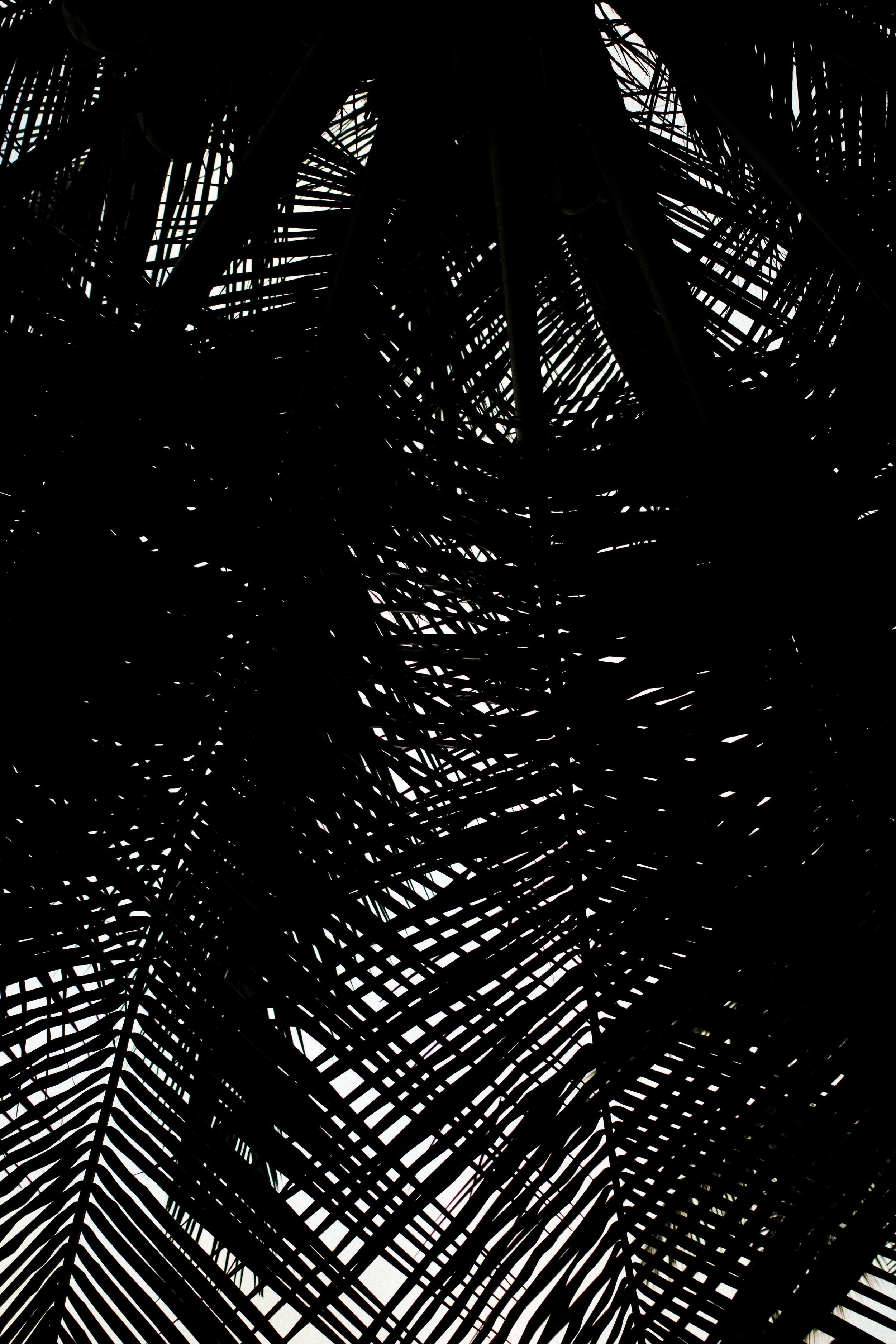 MALDIVES_CORONA_COCONUT COMRADERY_10.jpg