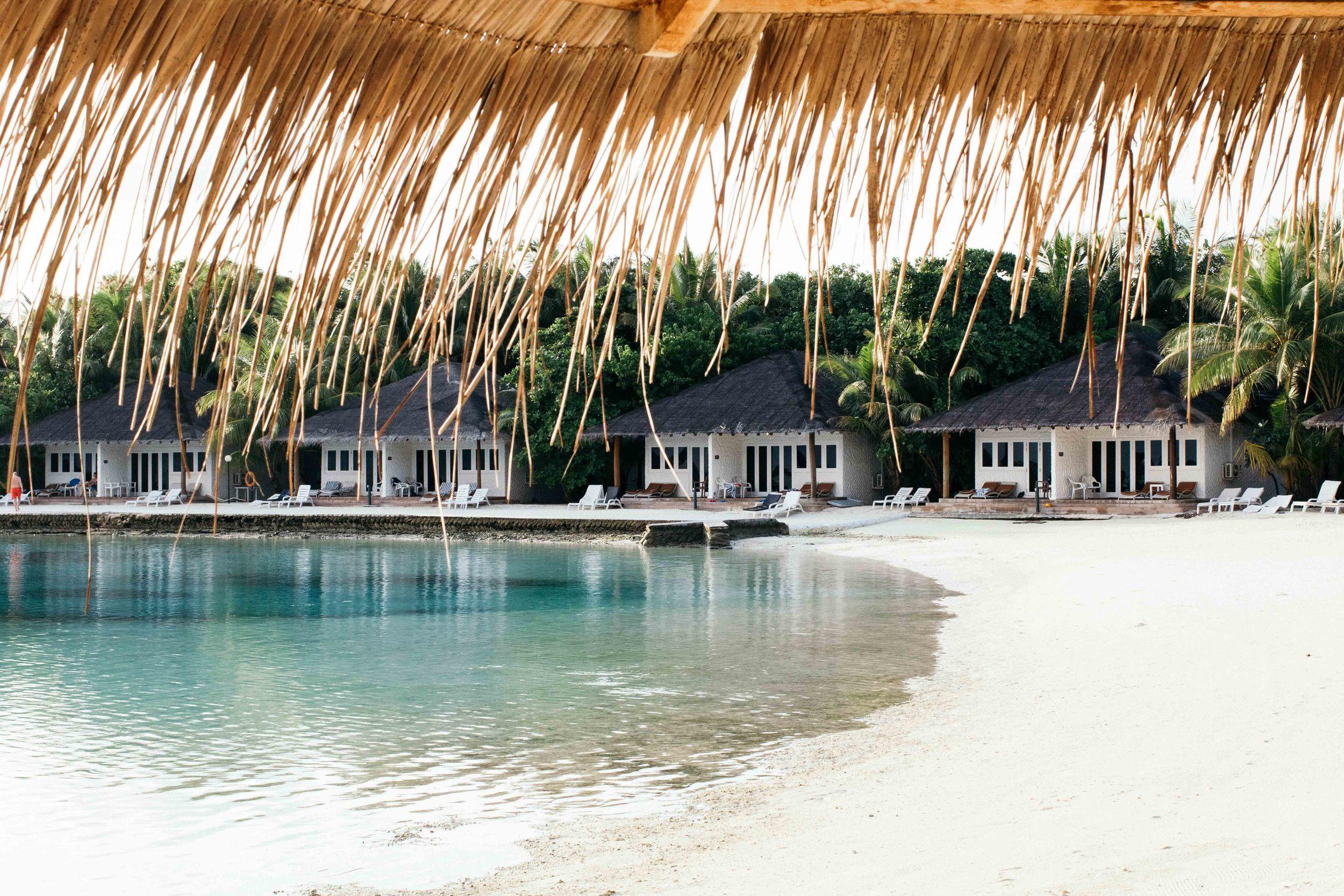 MALDIVES_CORONA_COCONUT COMRADERY_02.jpg