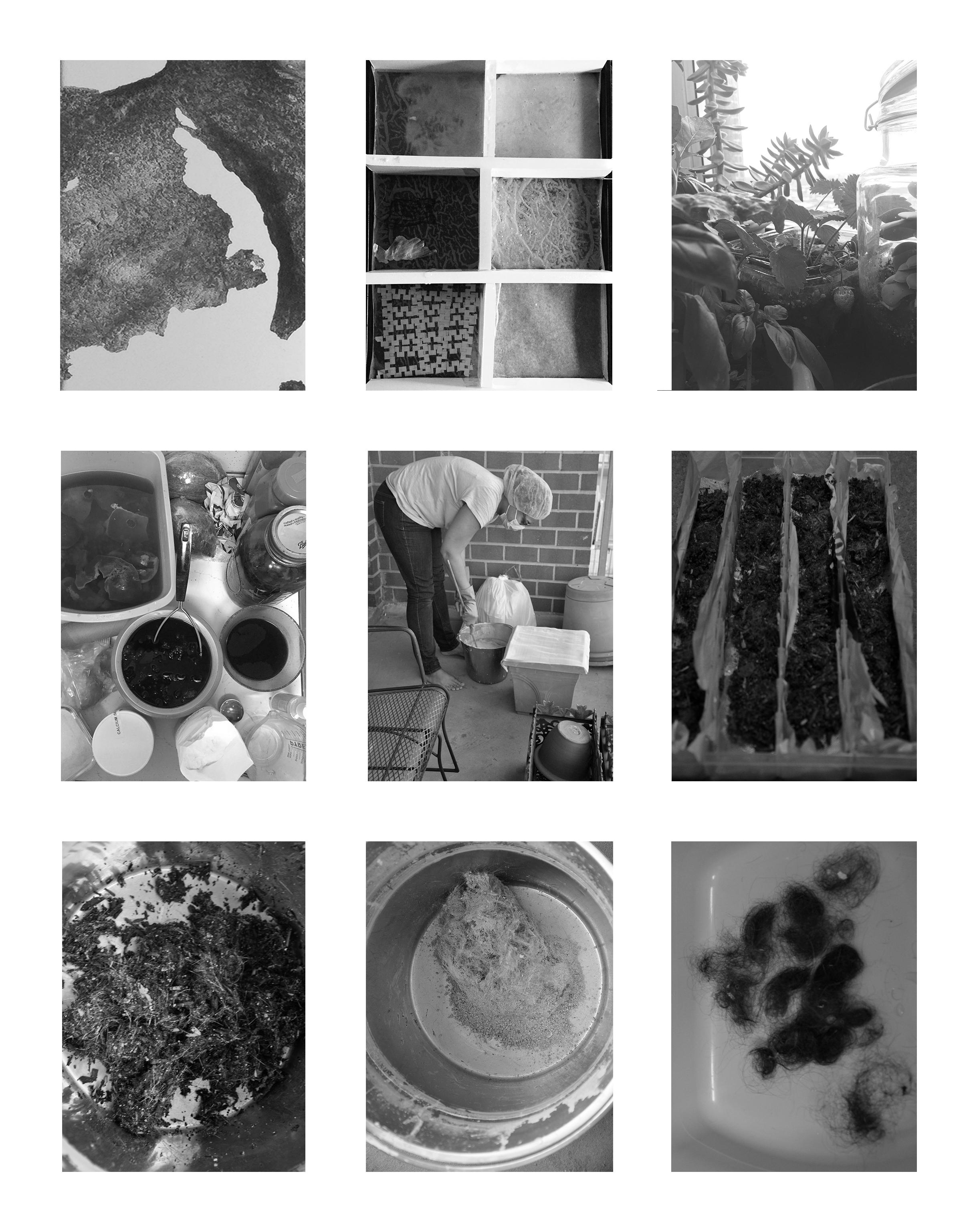 bioplastic cover.jpg