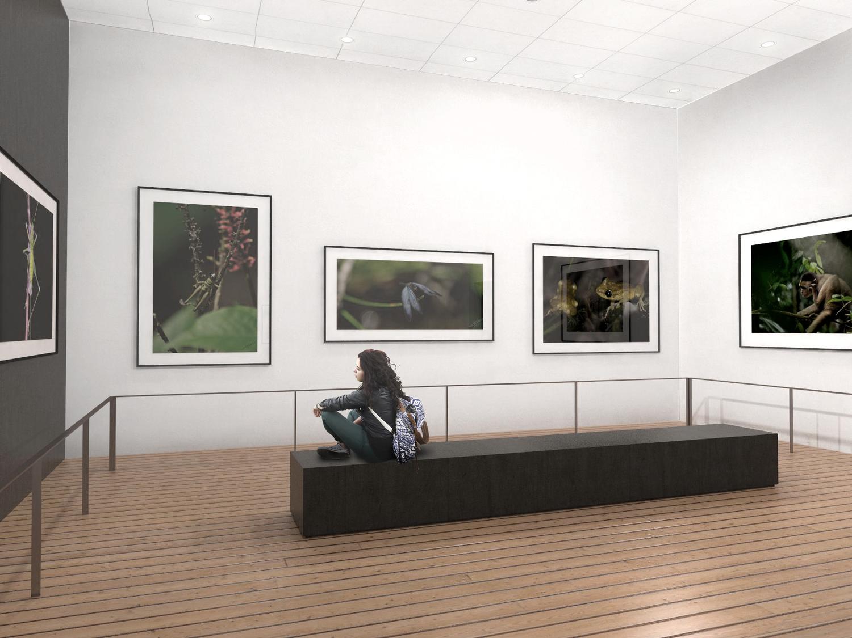 Exposicion+3.jpg