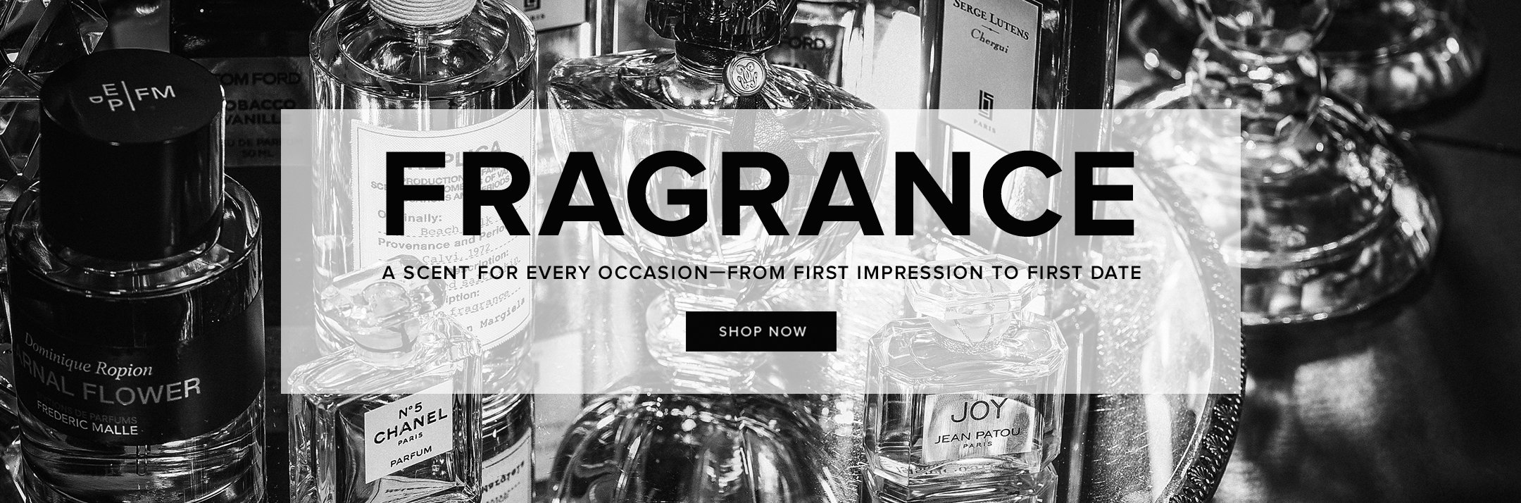 Fragrance-Interstitial.jpg