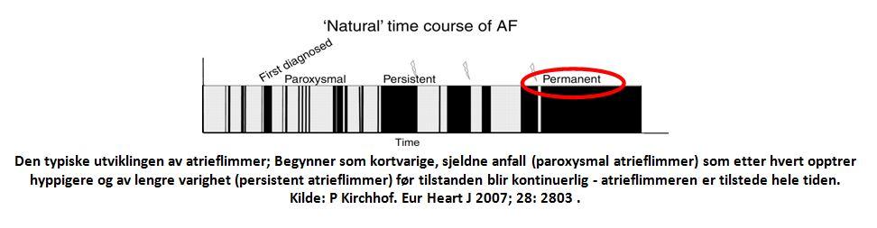 www.forskerlivet.no