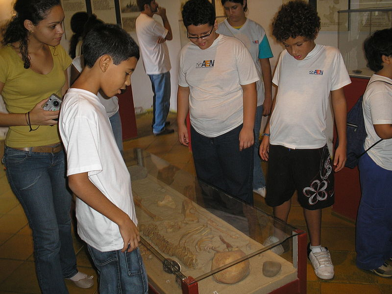 brazil students in museum