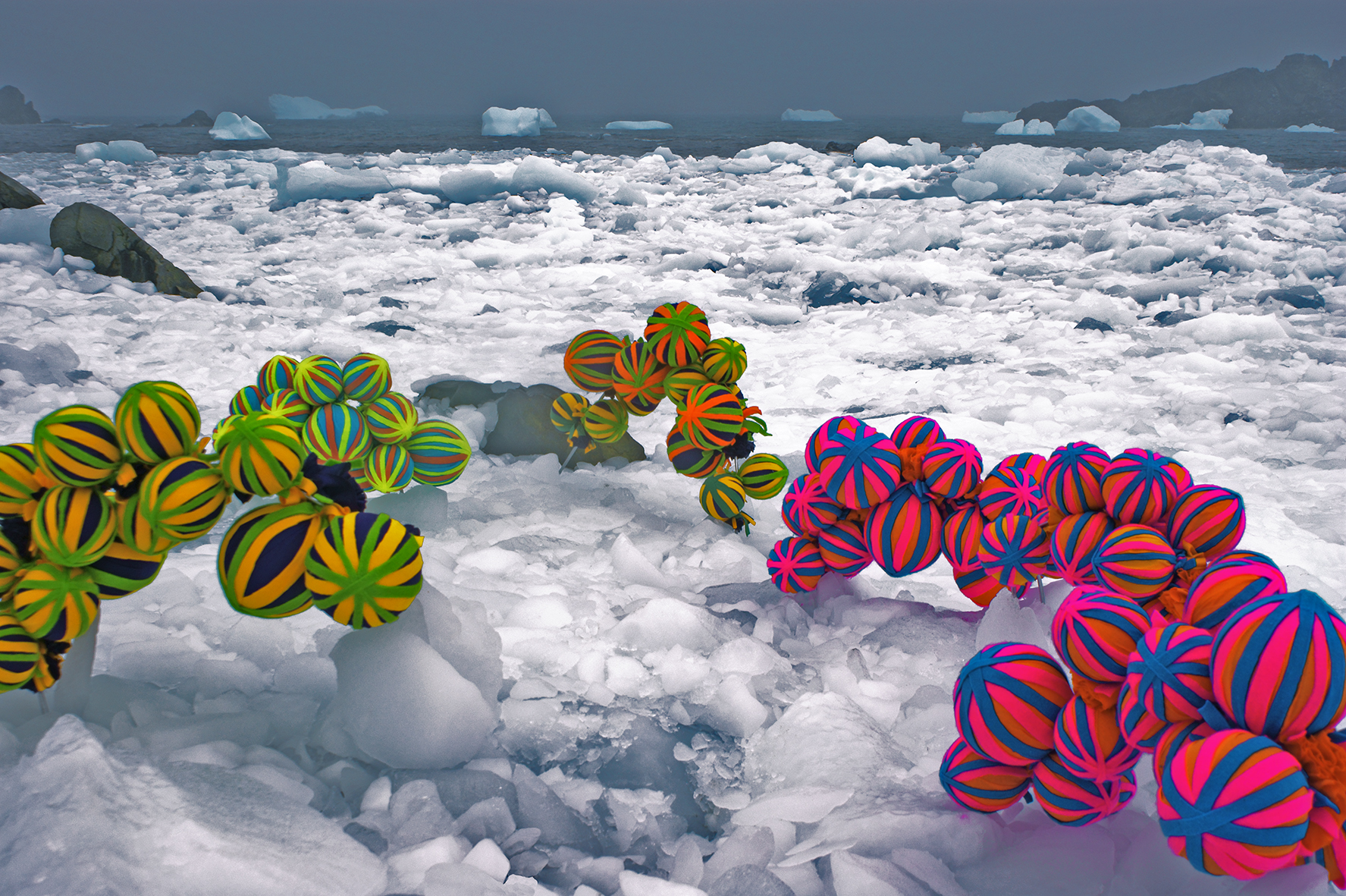 Andrea Juan - New Species IV - SOOC Photo - Antarctica 2011