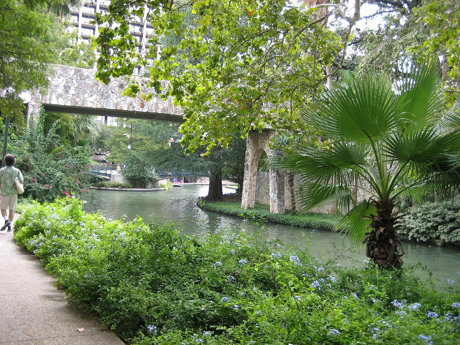 Riverwalk / foliage