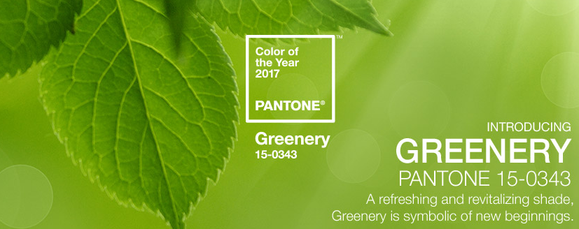 color of the year - green