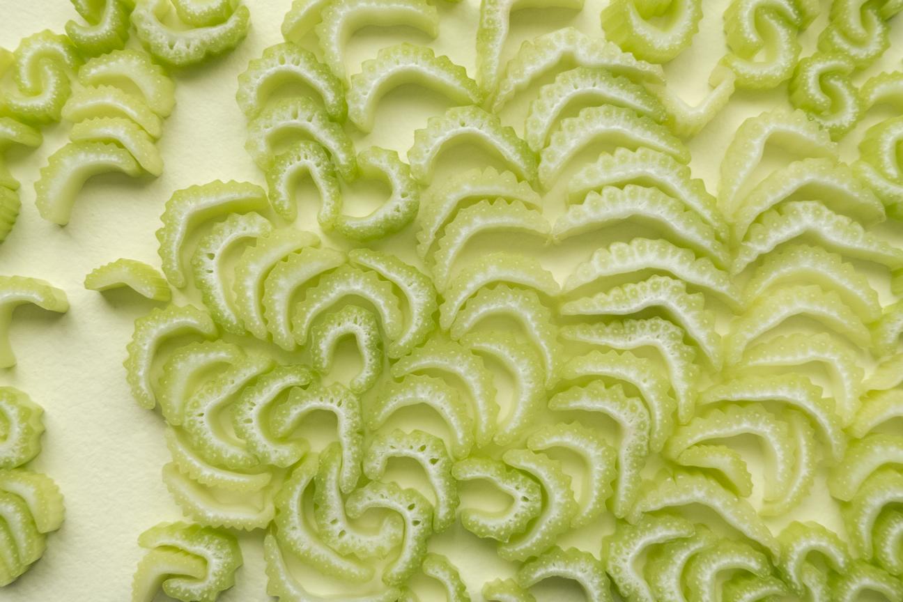 Celery#7_FOODISM360_SdL.png