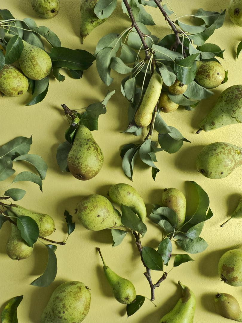 Pears_still#1_FOODISM360.jpg