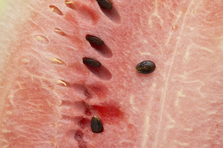 Watermelon_1540210.jpg