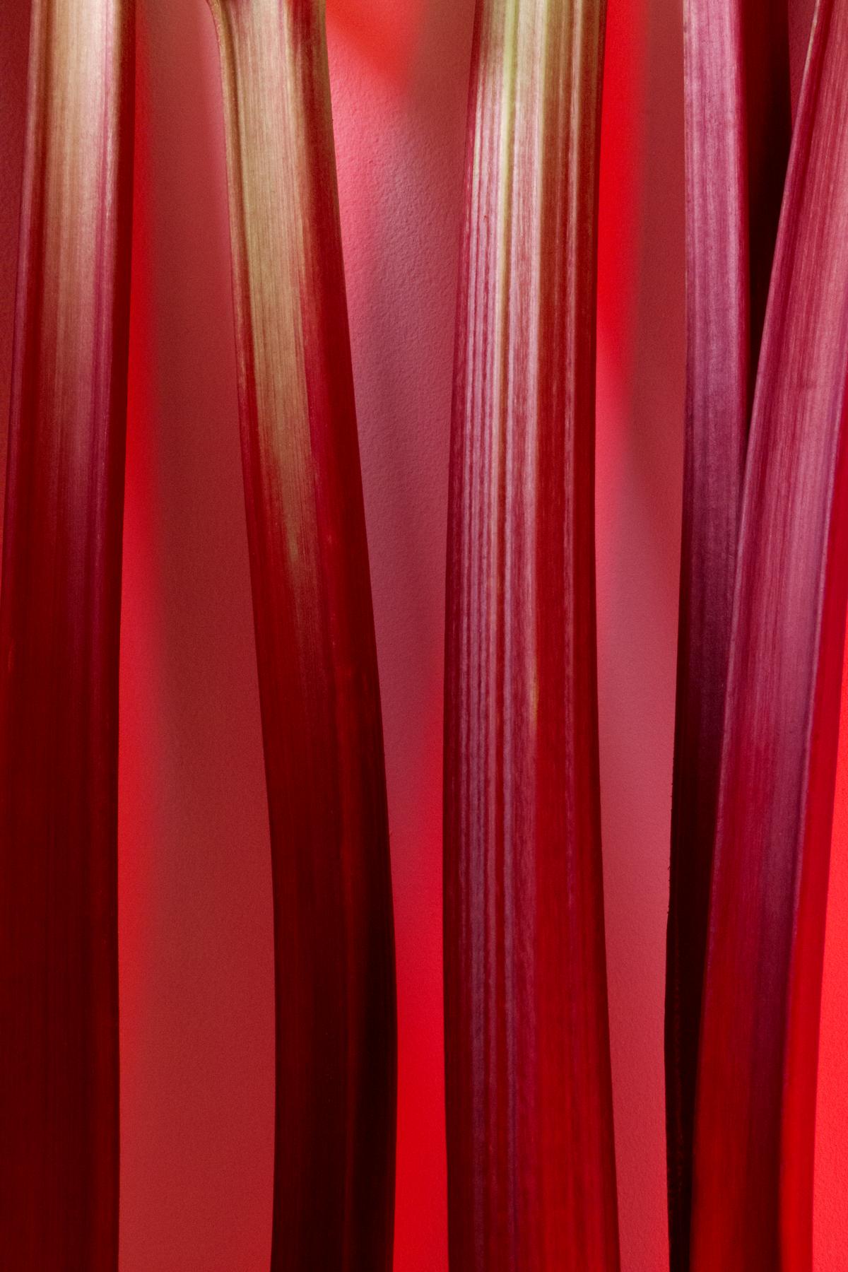 Rhubarb_moodlighting#2_FOODISM360.png