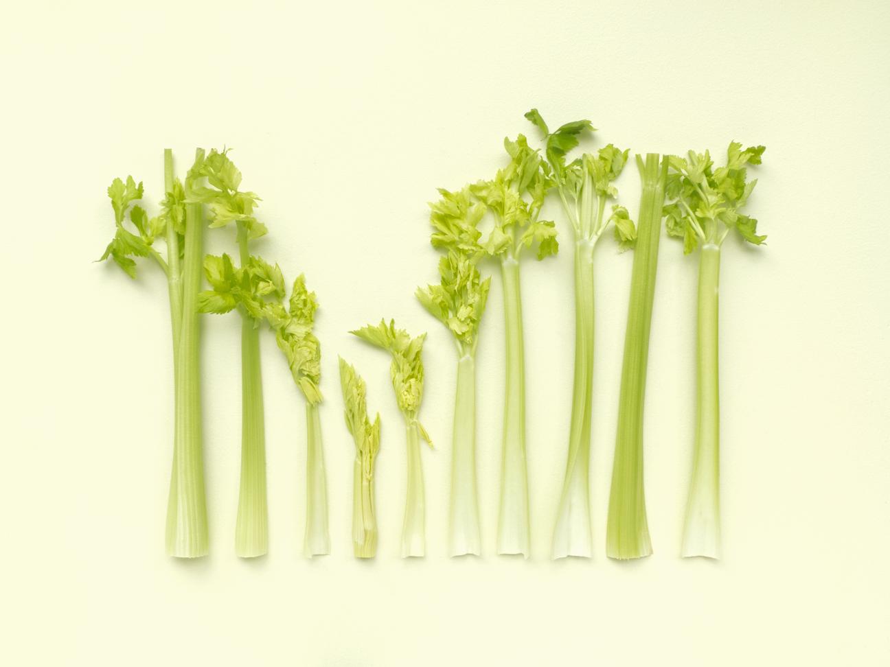 Celery#3_FOODISM360_SdL.png