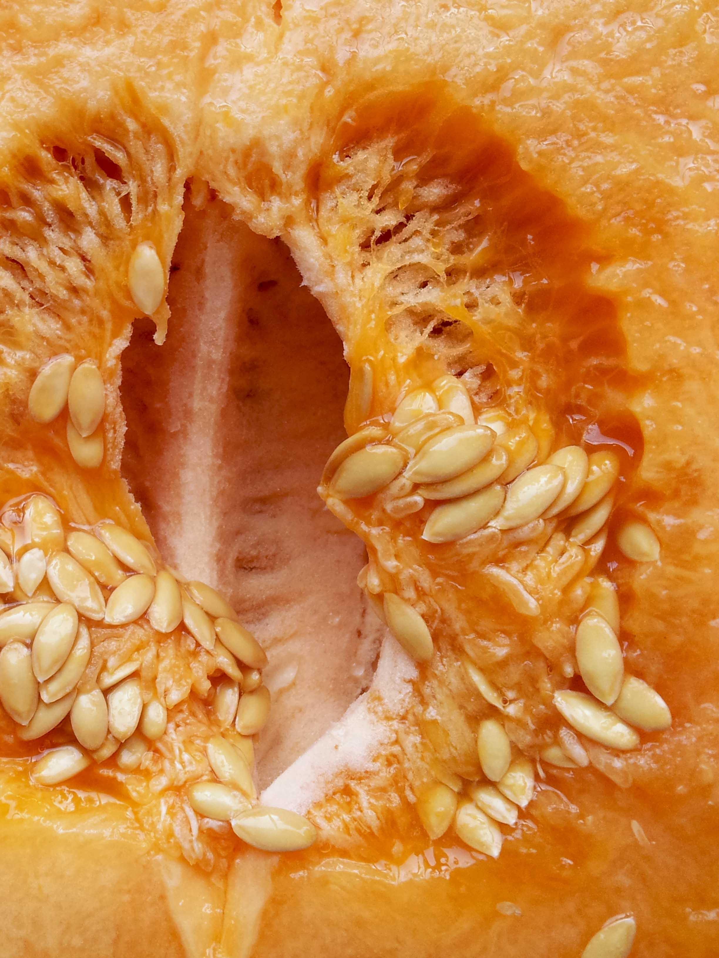 Pineapple_melon.jpg