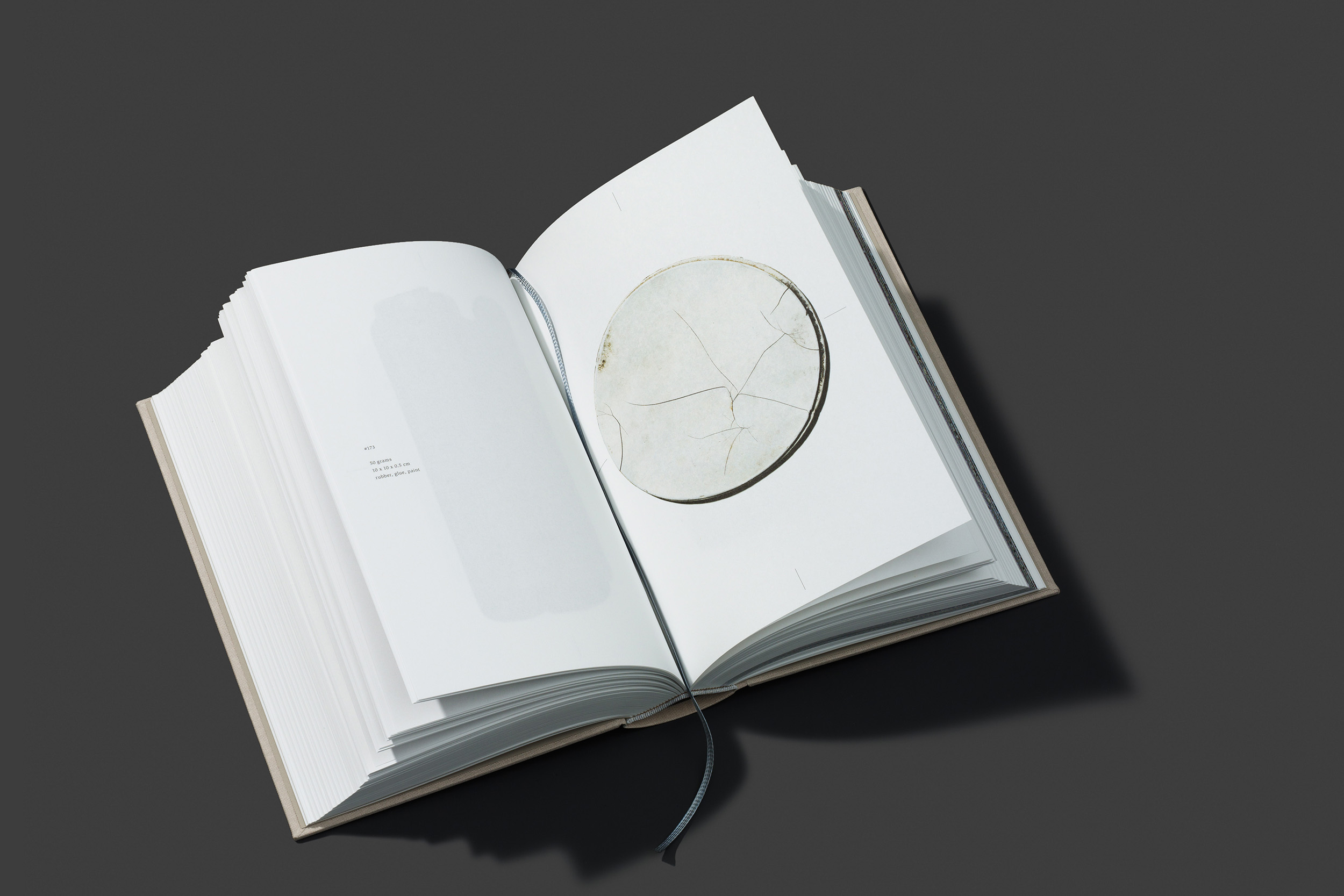 worthless_book_06.jpg