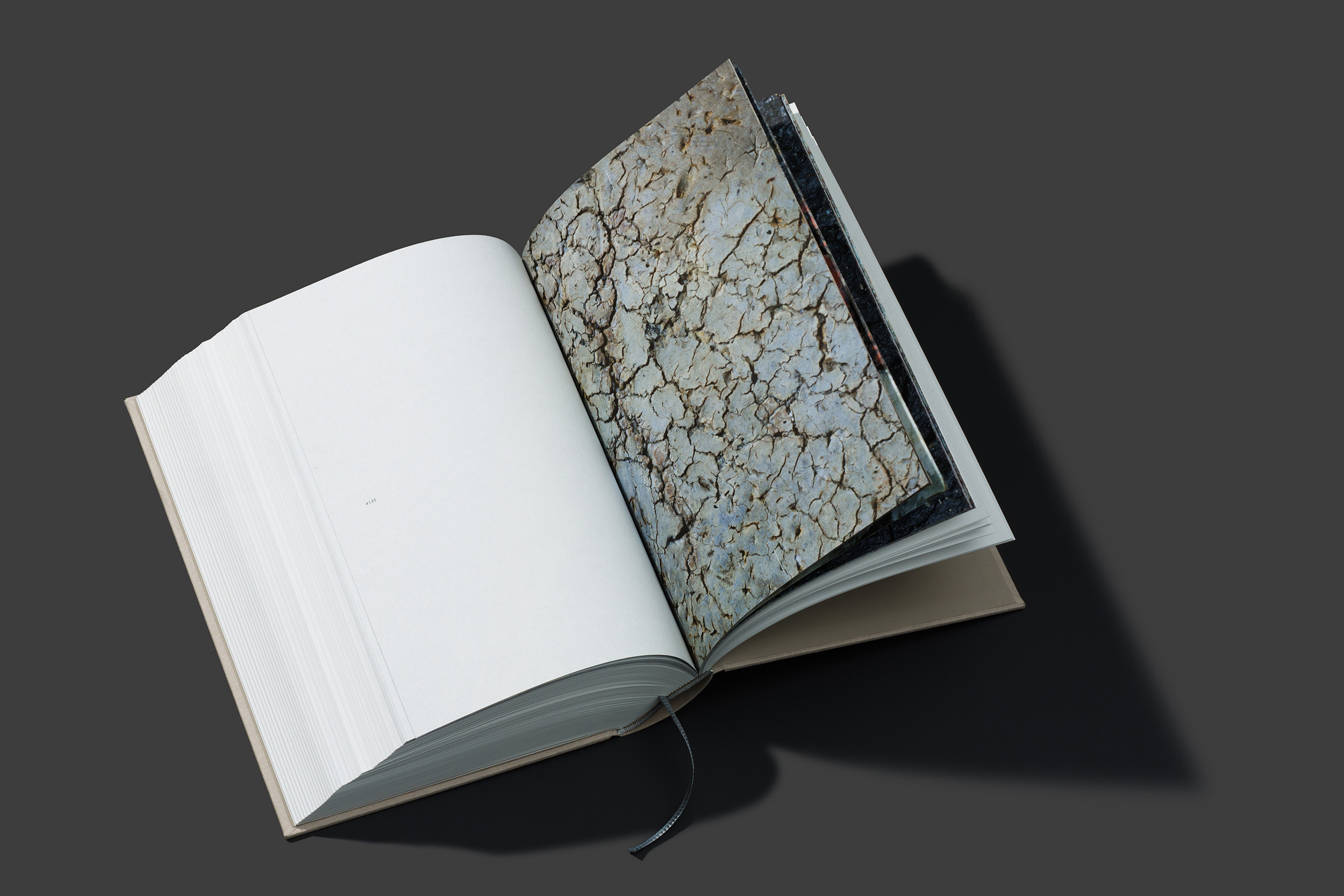 worthless_book_10.jpg