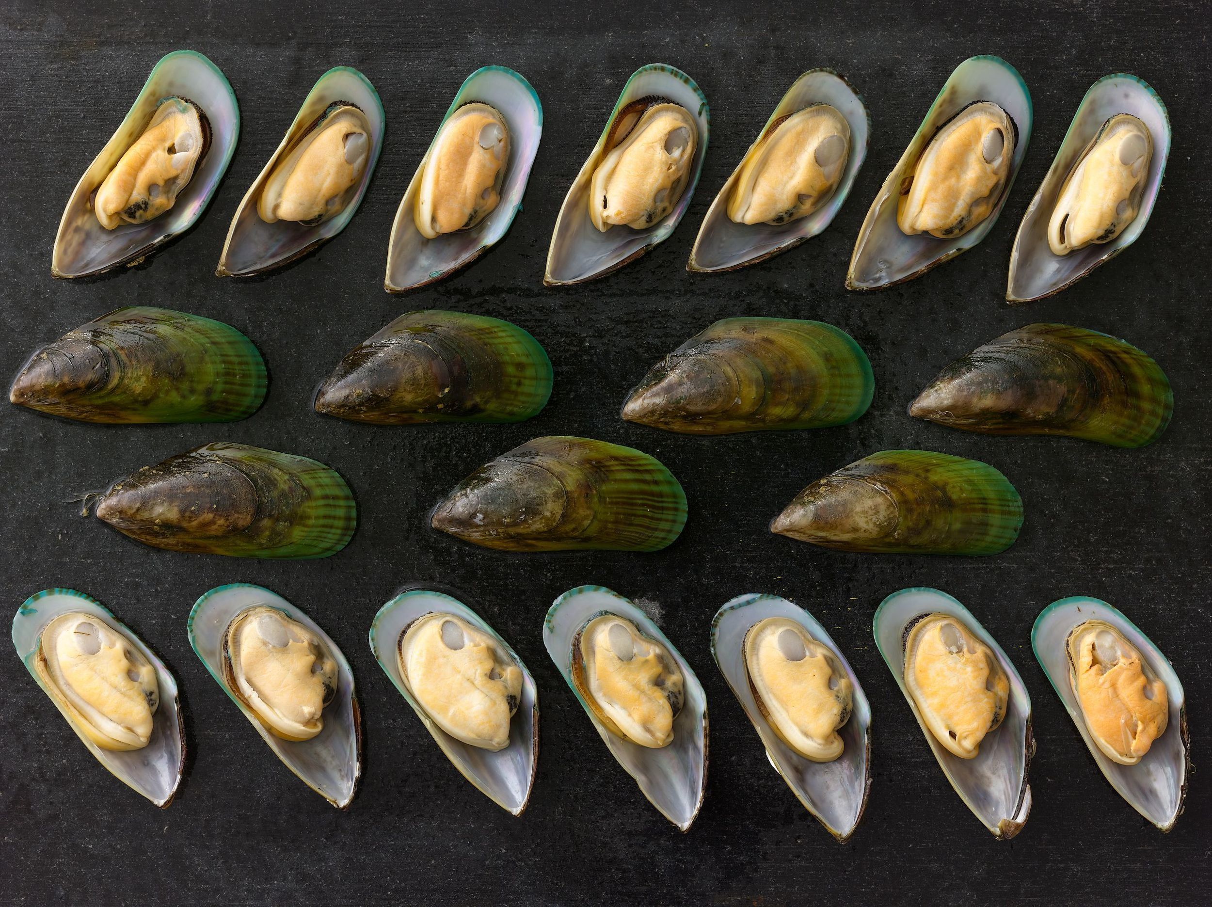 Excellence &Responsibility    PREMIUM SEAFOOD    New Zealand Mussels