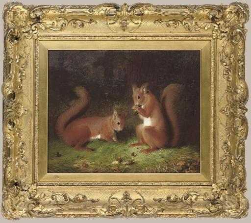 abel-hold-the-squirrels.jpg