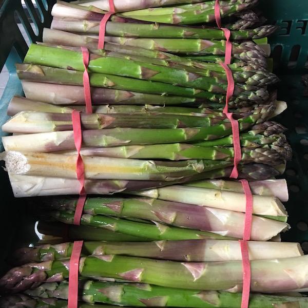 larkhill asparagus 3.jpg