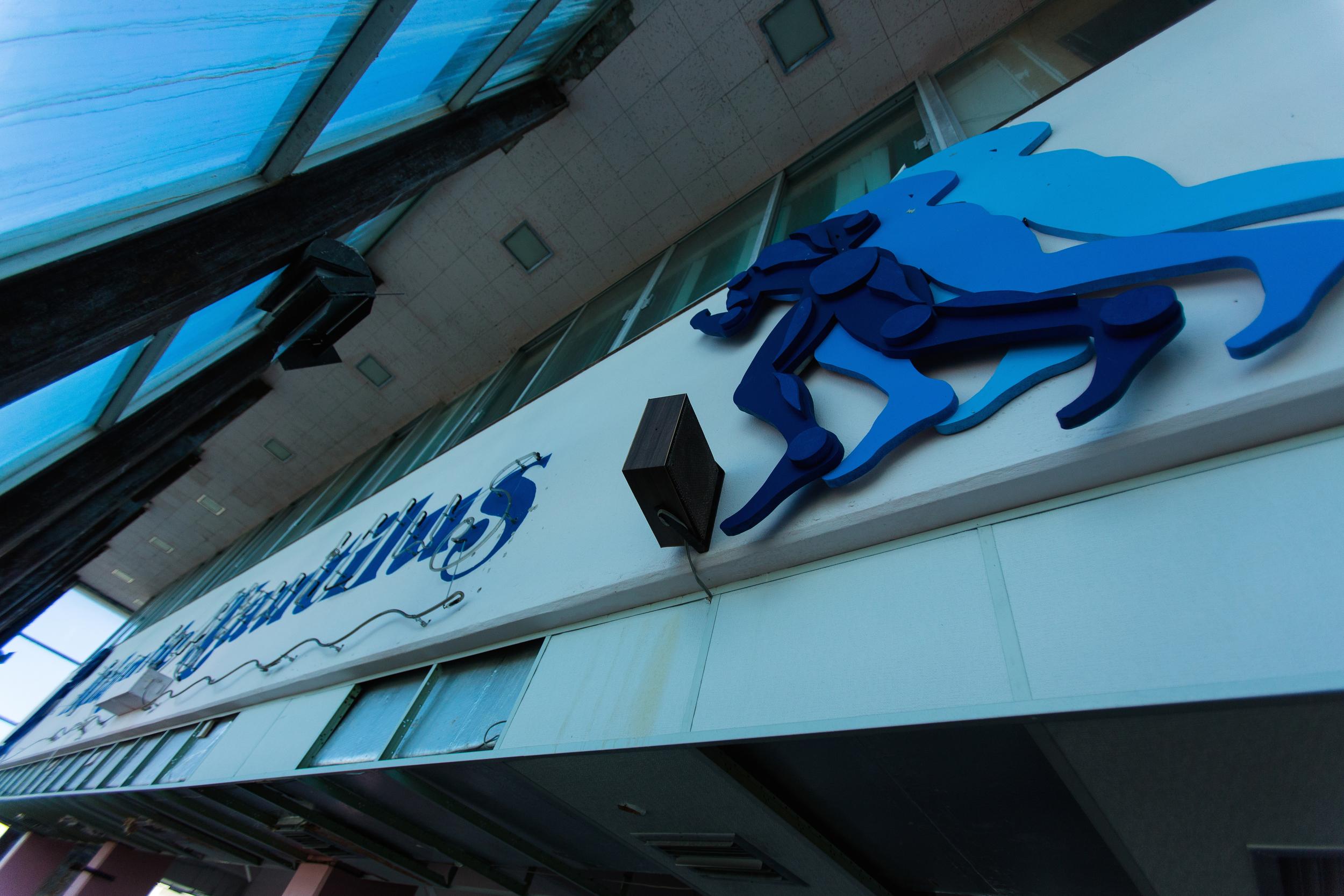 Glass Bank Nautilus
