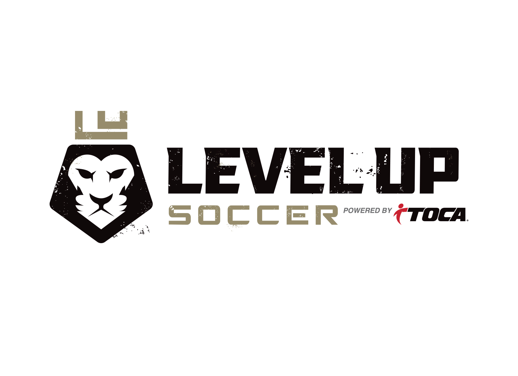 custom-soccer-logo-design-for-level-up-soccer-academy-2.jpg