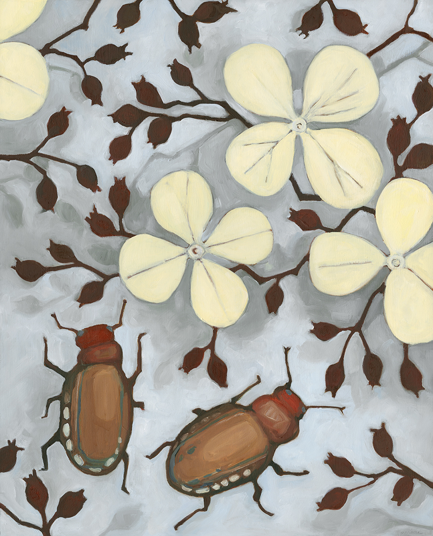 Hydrangea & Beetles