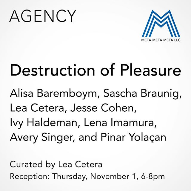 "Destruction of Pleasure, curated by Lea Cetera, opens this Thursday, Nov 1, 6-8pm. With works by Alisa Baremboym, Sascha Braunig, Lea Cetera, Jesse Cohen, Ivy Haldeman, Lena Imamura, Avery Singer, and Pinar Yolaçan.  Destruction of Pleasure brings together eight artists that play with feminism, corporeality, illusion and surrealism in their work in order to create a perspective that complicates traditional expectations of the viewer. In her 1975 essay Visual Pleasure and Narrative Cinema, Laura Mulvey called for the destruction of the traditional male-oriented gaze and the cultivation of alternative perspectives. Mulvey declared ""Destruction of Pleasure is a Radical Weapon"", that the traditional ""scopophilic"" view of film had always belonged to the masculine, and that there would be a conception of a new viewpoint, that of an unknown, new ""language of desire"". The works in the show offer ecstatic new narratives, histories, considerations from a new generation of female artists creating across a variety of media a visual language that is uniquely their own.  This is the inaugural show in the Colloquy series, where artists are invited to curate a show that includes their own work alongside other artists they are in dialog with. These exhibitions present an archive of a specific discourse while providing an additional layer of context to the artists practice.  The show will be up until November 29 with galley hours by appointment only. Contact us to arrange a viewing: metametameta.org@gmail.com"