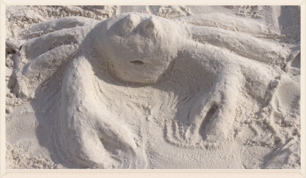 My wife's white sand crab sculpture