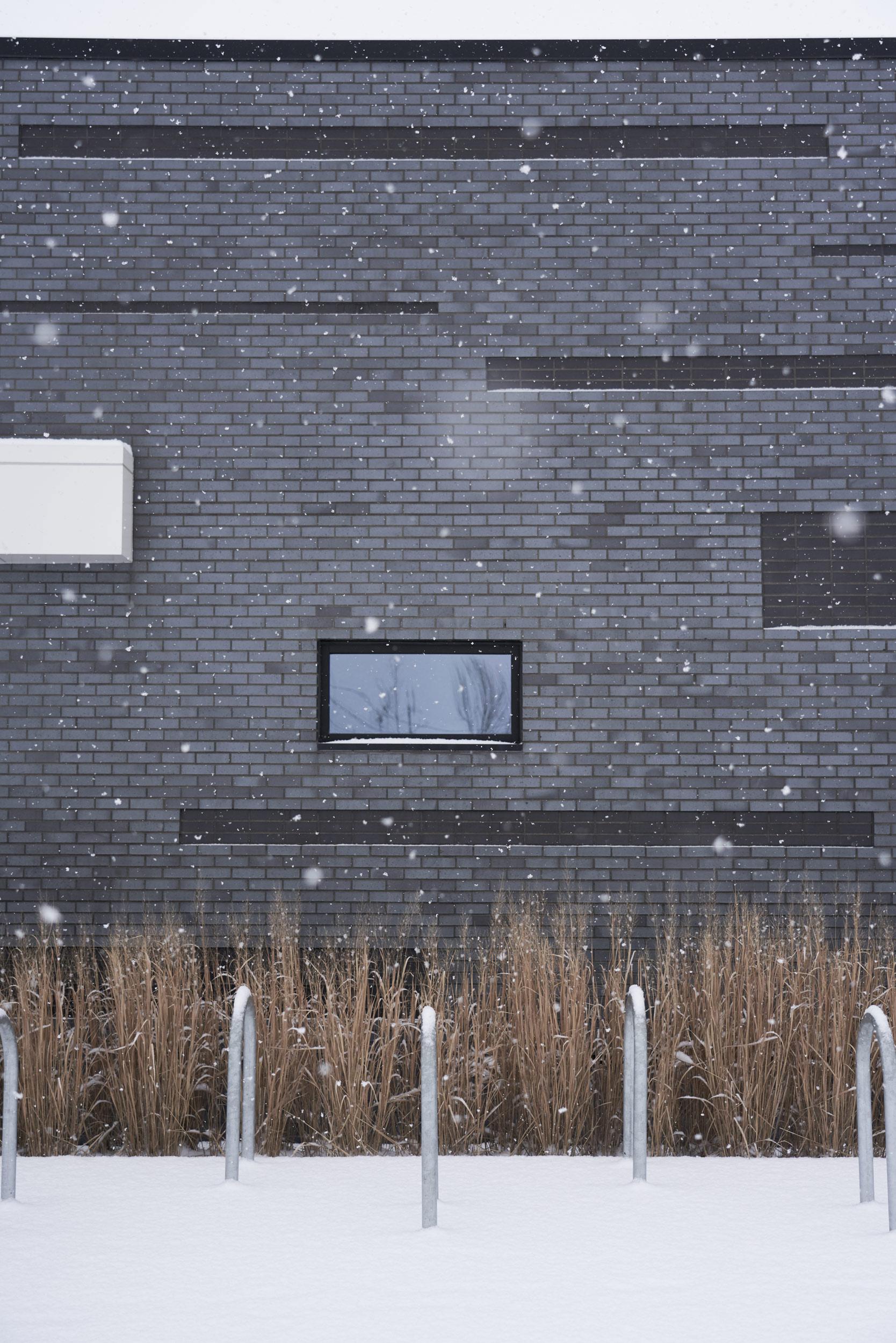 Bellevue-Library-Snow-Raw-8-web.jpg