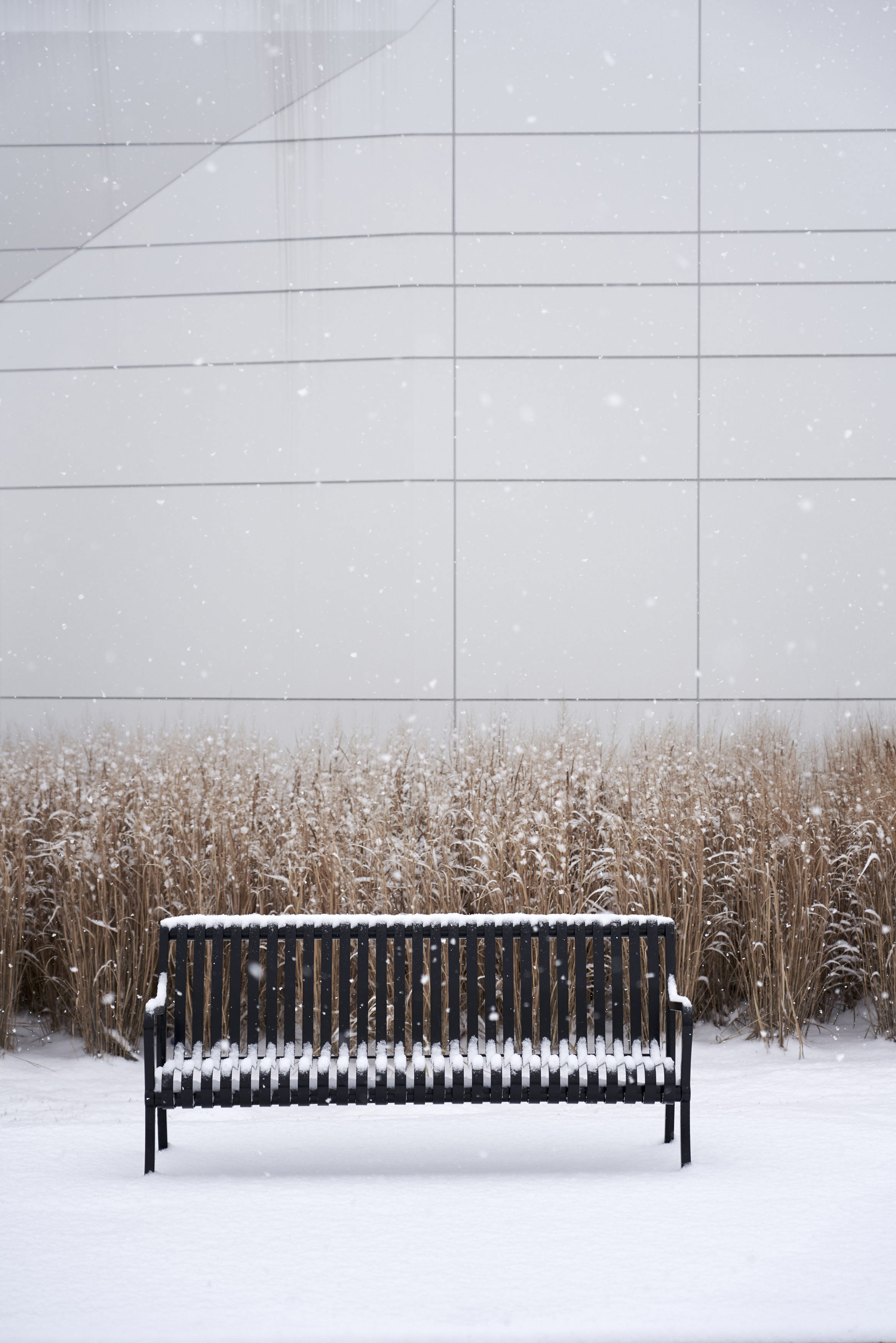 Bellevue-Library-Snow-Raw-2-web.jpg