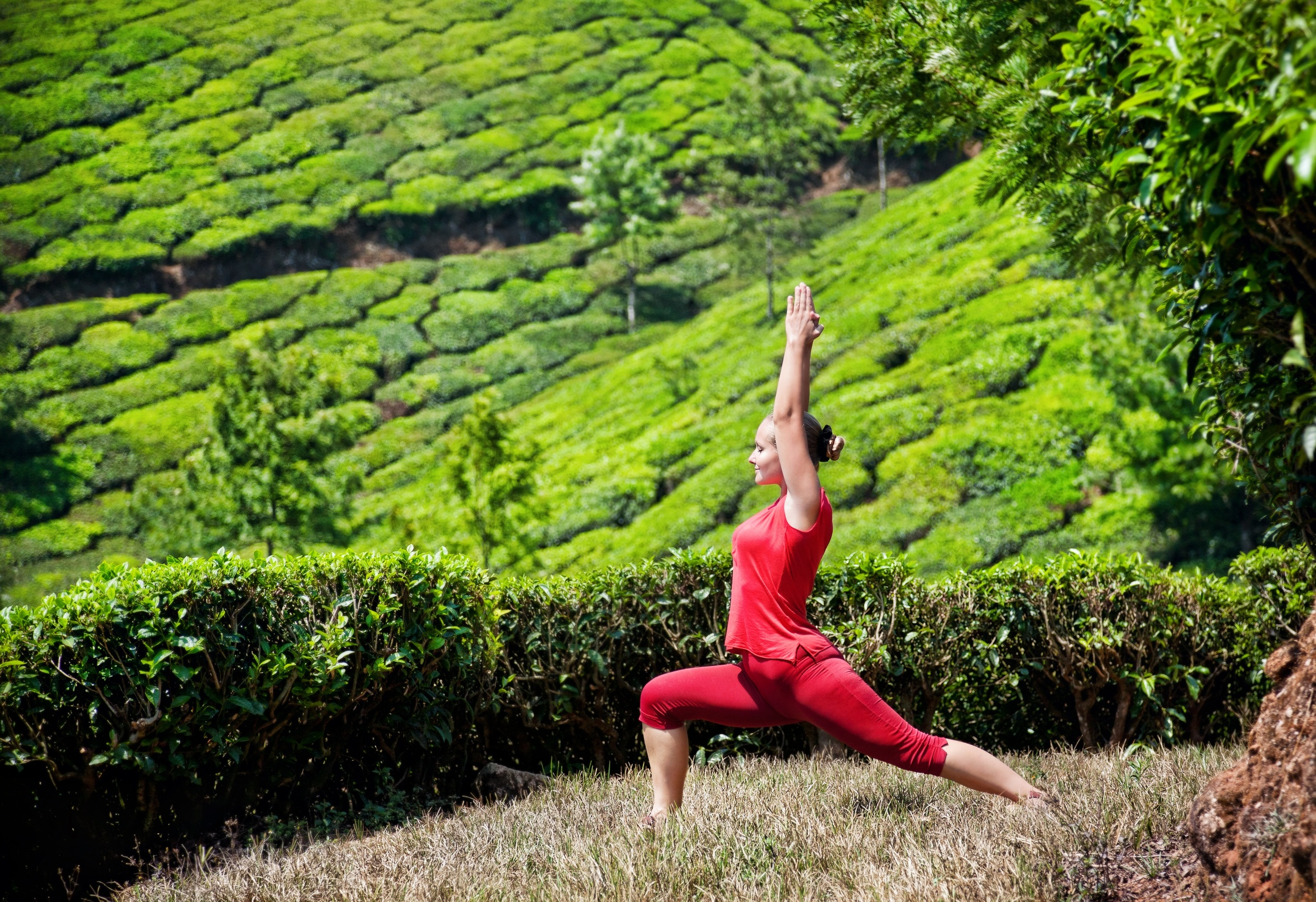 Virtual Yoga - Find Yoga Retreat place