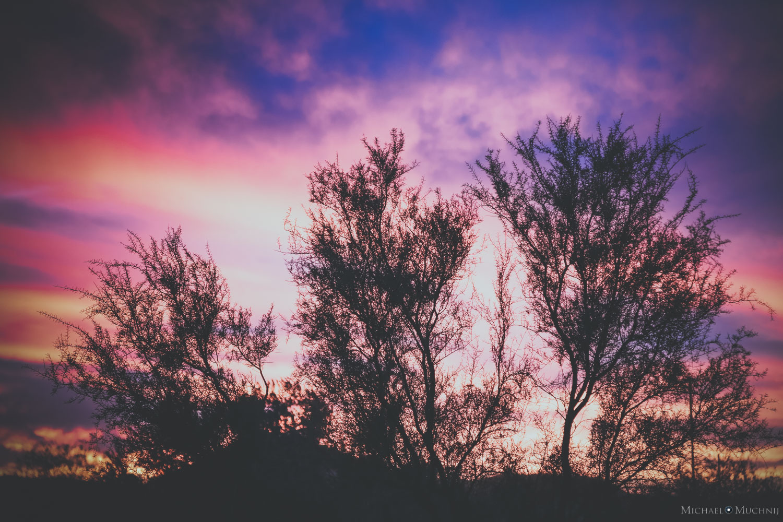 Anthem Sunset-6.jpg
