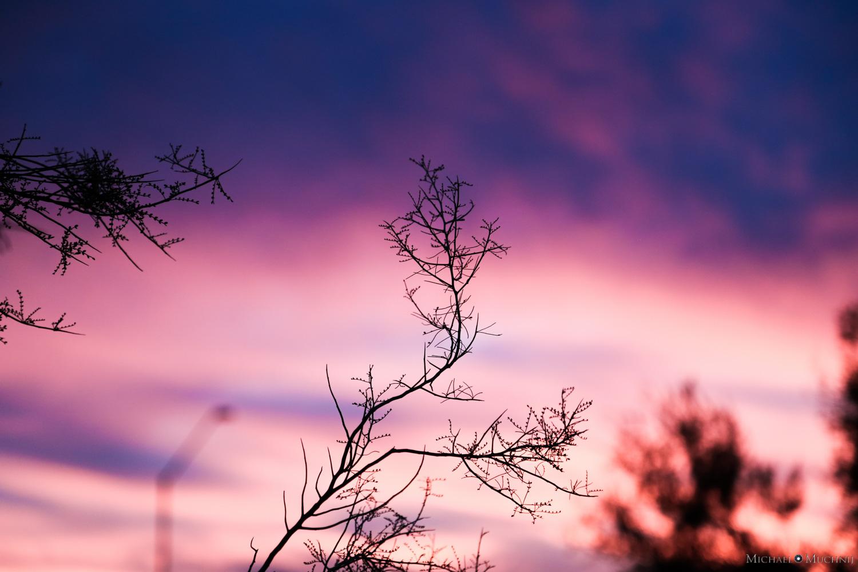 Anthem Sunset-9.jpg