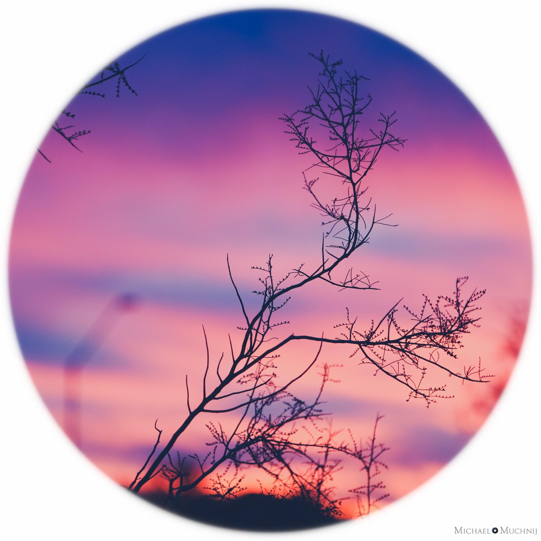 Anthem Sunset-10.jpg