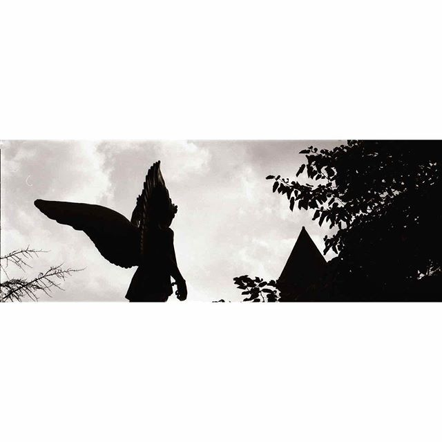 The Angel of Bushwick /// Wondering around Bushwick with @kodyklein     #kodaktrix500 #pentax67 #35mm #filmcommunity #filmphotography #nyc #blackandwhite