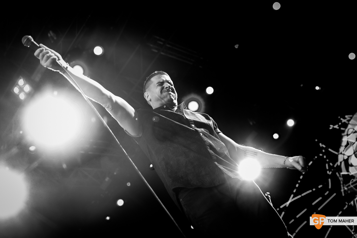 Damien Dempsey at Iveagh Gardens by Tom Maher (6 July 2019) (1).jpg