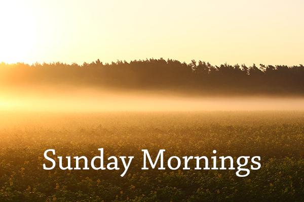 Sunday mornings web.jpg