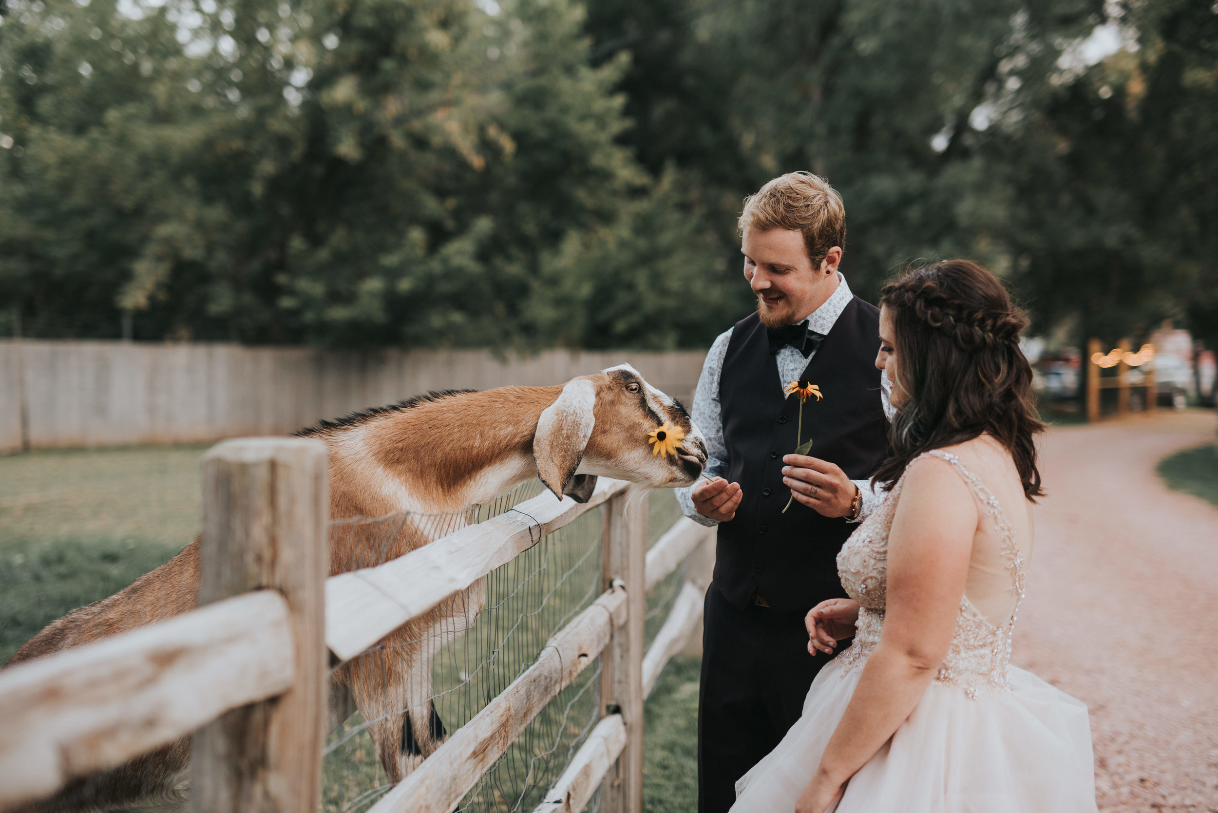 cora-kendall-wedding0876.JPG