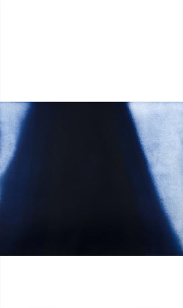 """Black Tiger Ambush Color aquatint 72"""" x 42"""" 2012"""