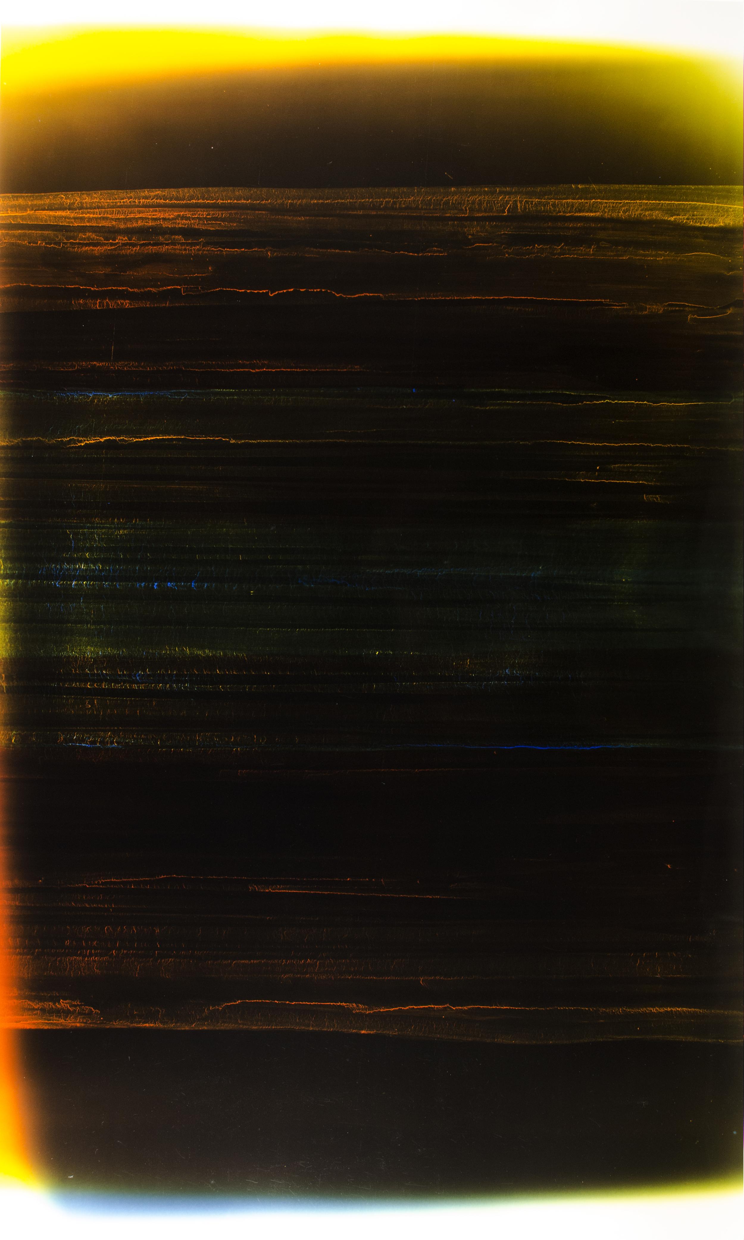 "Rise Above (004) Cliché-verre 44"" x 25"" 2009"