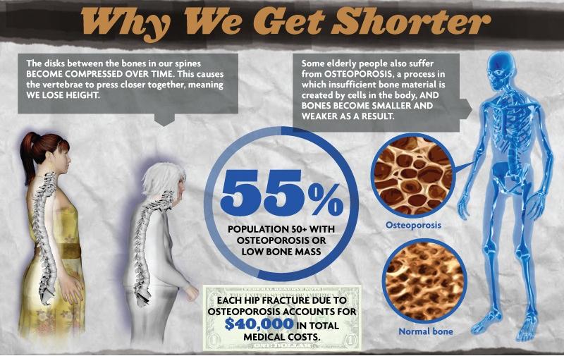 Why we get shorter