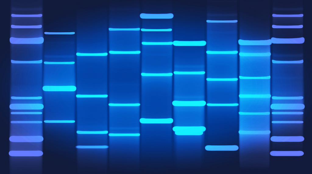 New company Helix wants to make an 'app store' for your DNA Credit:  DNA Art Online