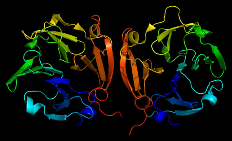 The structure of MMP9