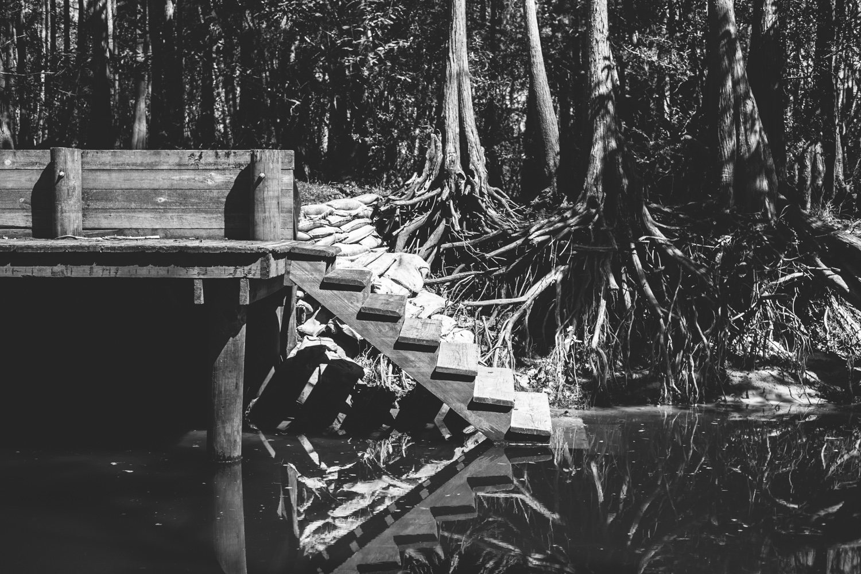 Florida-15.jpg