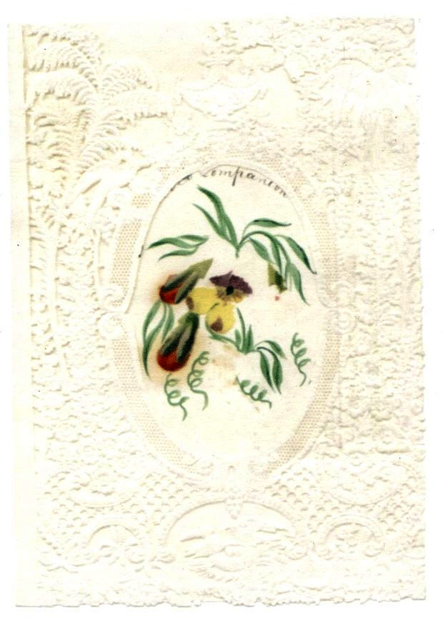 Mary Gladstone, card, to W.E. Gladstone, n.d. Flintshire Record Office, GG 603. All images used with permission.