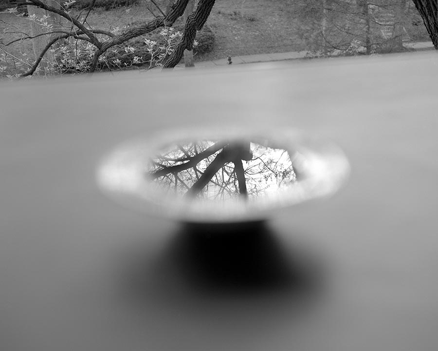 shallow-bowl.jpg